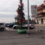 Lo Spelacchio di Castelverde